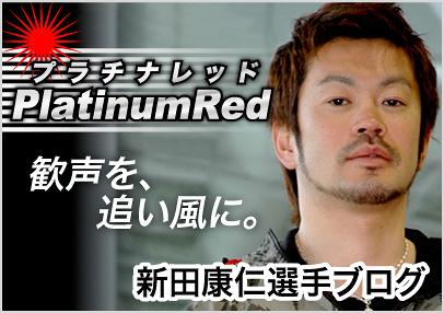 新田康仁選手 ブログ